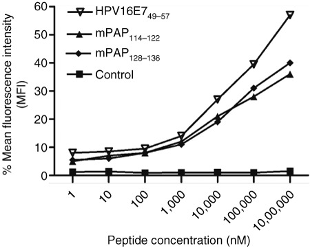 Peptide-binding assay. RMA-S cells were cultured for 24