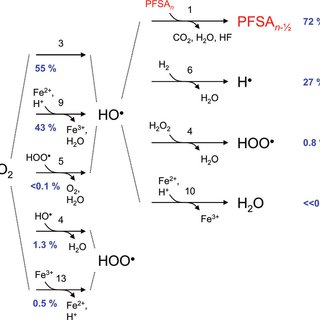 (Color online) Hydroxyl radical attack on poly(styrene