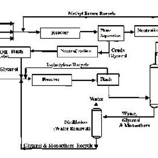 P rocess flow diagram for coupled production of glycerol