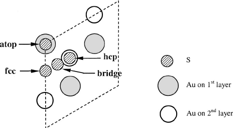An illustration of adsorption sites ͑ fcc , hcp , atop
