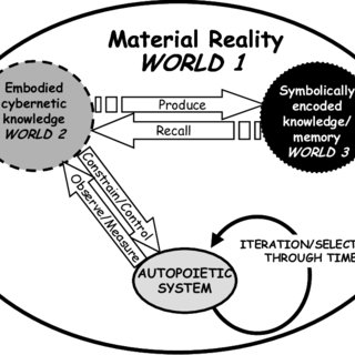 (PDF) A biological theory of knowledge and applications to