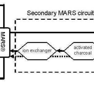 Schematic diagram of the Molecular Adsorbents