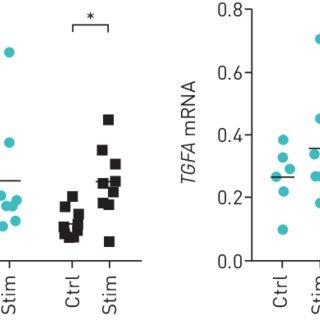 (PDF) Functional characterisation of bone marrow-derived