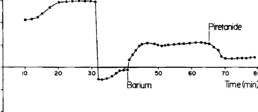 orbital diagram for arsenic rheem wiring furnace stability barium great installation of exampleoftimecourseofshort circuitcurrent i ofguinea and rh researchgate net