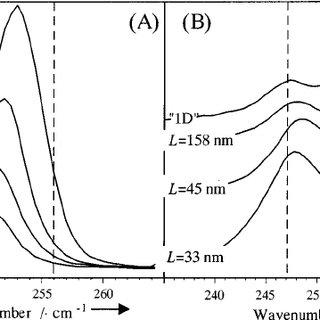 Resonance Raman spectra of Cd 0.35 Zn 0.65 Se/ZnSe quantum