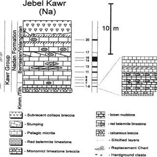 (PDF) Facies characterization of mid-mesozoic deep-water