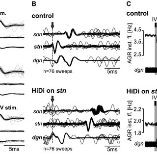 The IV neurons directly diminish ectopic spiking via