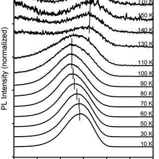 Temperature dependence of the magnetization for the MnS