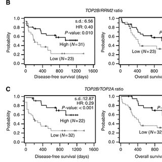 (PDF) High TOP2B/TOP2A expression ratio at diagnosis