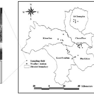 (PDF) Evaluating Sugarcane Growth and Maturity Using