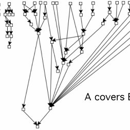 An avalanche effect in the coverage hierarchy of Magic
