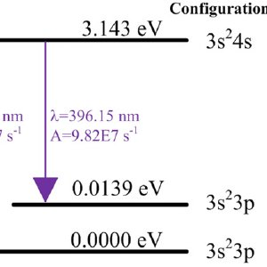 Simple Photosynthesis Diagram Simple Food Diagram Wiring