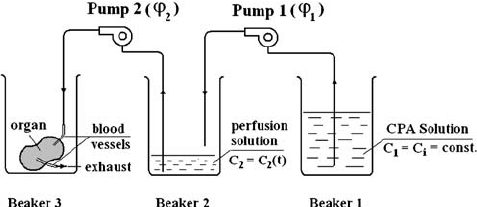 Schematic of the two-pump system for providing graded