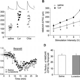(PDF) The Novel Antipsychotic Drug Lurasidone Enhances N