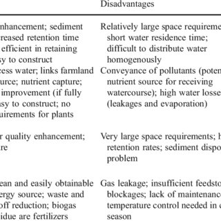 Summary of the key advantages and disadvantages of