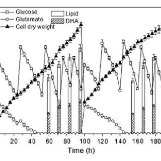 (PDF) Batch, fed-batch and repeated fed-batch fermentation