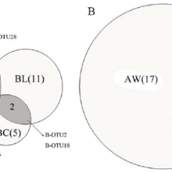 Venn Diagram Of Bacteria And Archaea Bell System 801 Door Entry Telephone Wiring Showing The Distribution Otus A Bacterial B Archaeal Bw Aw Sample W Bc Ac C Bl Al L