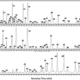 Chromatogram of HPLC-TOF-MS for phenolic compounds in tea