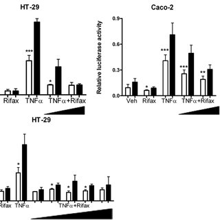 mRNA analysis of hPXR target genes in colon tissue