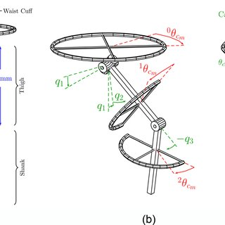 Illustrations of the cable-driven robot leg. (a) Diagram