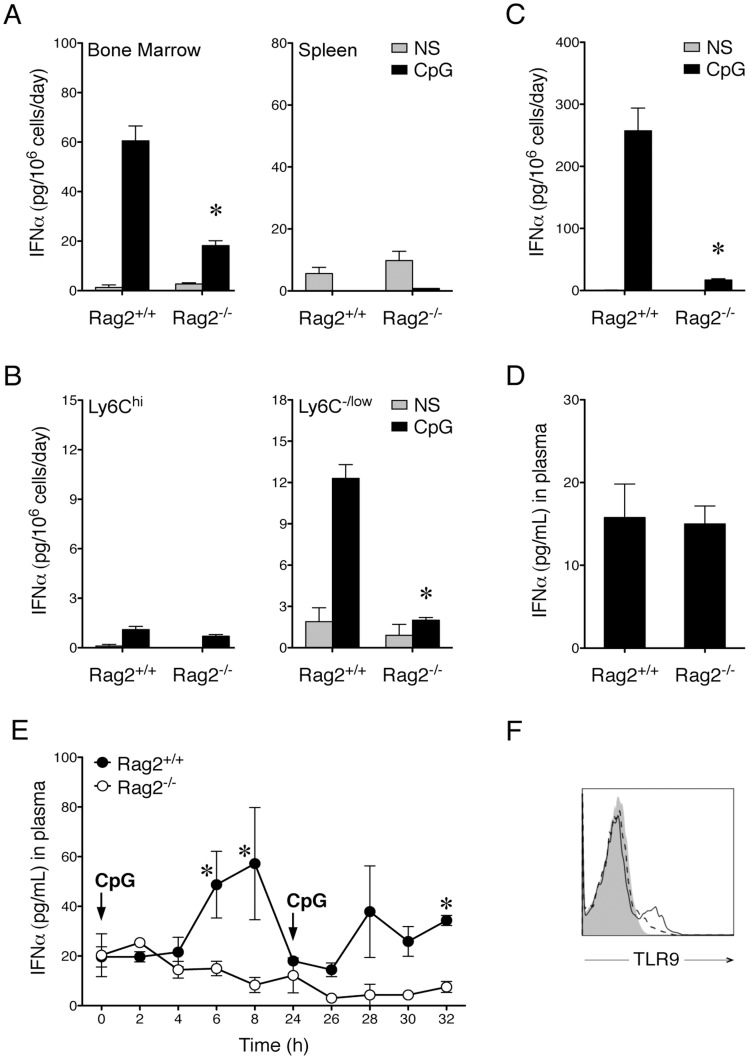 Recombination Activating Gene-2 Regulates CpG-Mediated