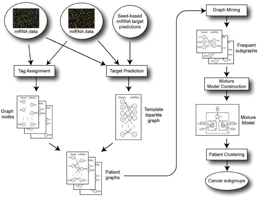 Schematic overview of the iSubgraph algorithm. The flow