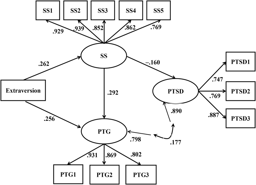 The structural equation modeling results of the final