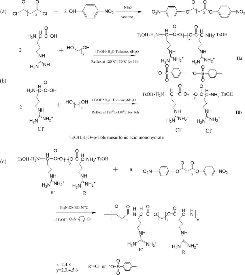 hight resolution of  a preparation of monomer i di p nitrophenyl ester of dicarboxylic