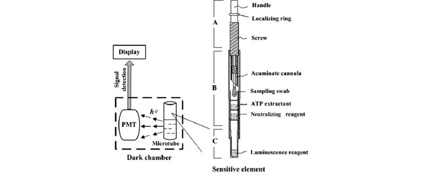 Block diagram of the bioluminescence-based biosensor