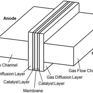 An illustration of PEM fuel cell operation. PEM: proton