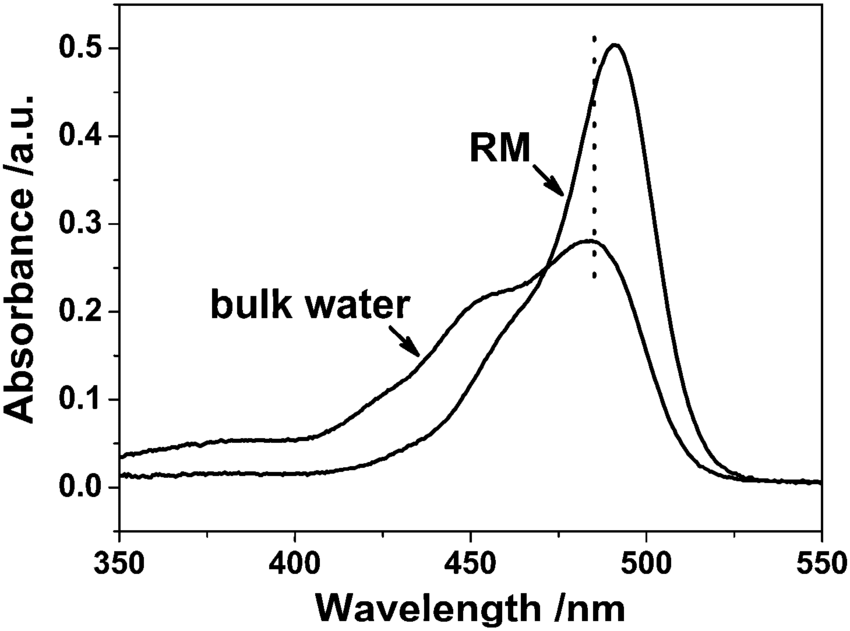Absorption spectra of fluorescein in bulk water and in