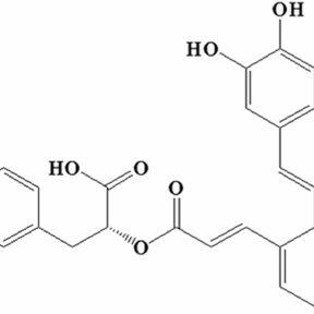 (PDF) Salvianolic Acid A Prevents the Pathological
