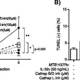 Model of TNF receptor signaling regulation of cell fate