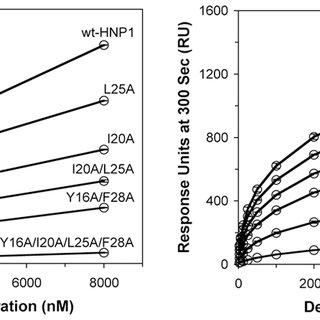 Quaternary structure of wild type HNP1. (A) Dimeric and (B