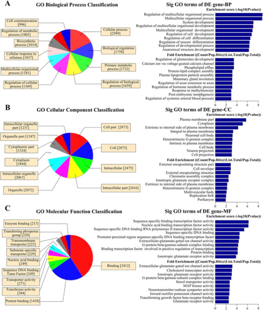 hight resolution of bio information analysis of differentially methylated genes at left are pie diagrams of