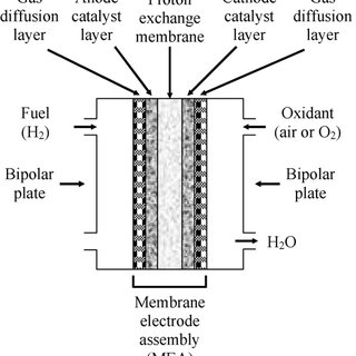 Basic components of proton exchange membrane fuel cell