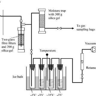 (PDF) Biomass gasification in a circulating fluidized bed