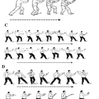 (PDF) Effects of tai chi program on neuromuscular function