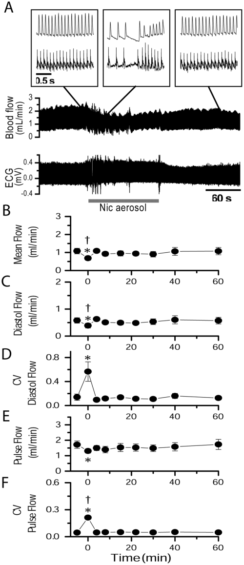 small resolution of unilateral section of the ovarian nerve counteracted the effects of nai on uterine artery blood flow