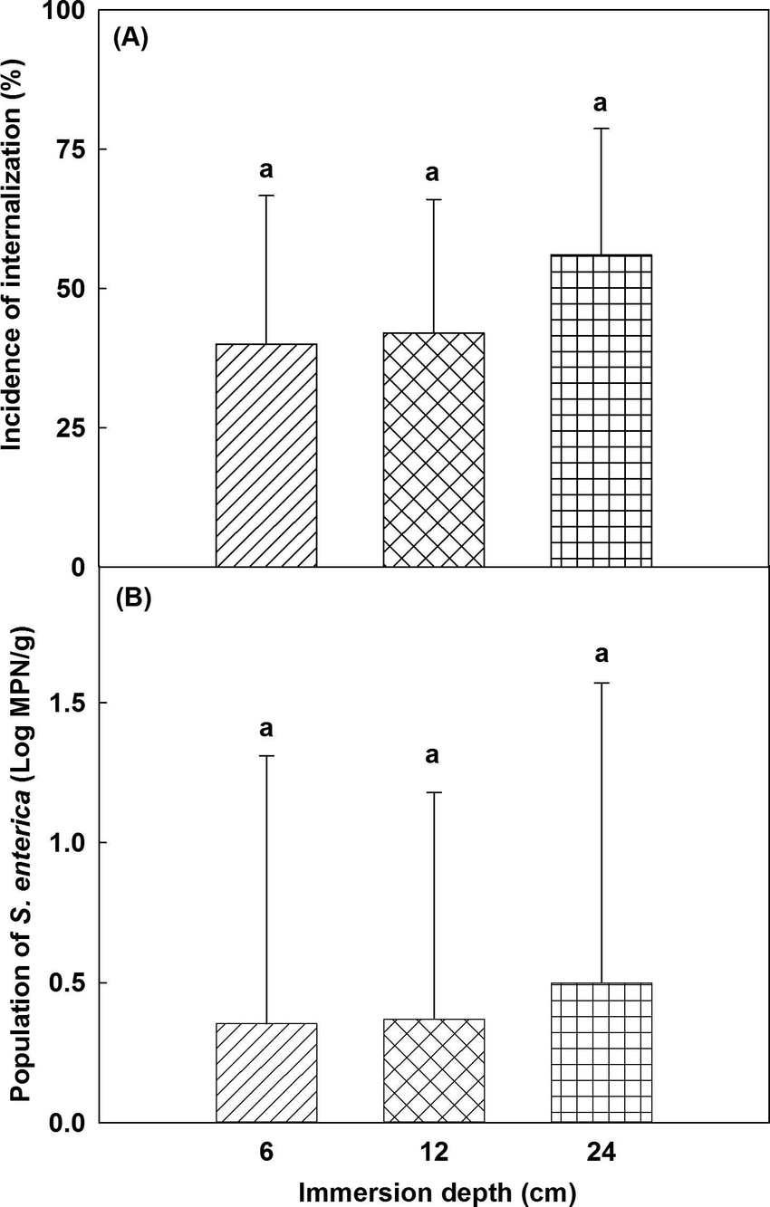 Effect of immersion depth on the internalization of S