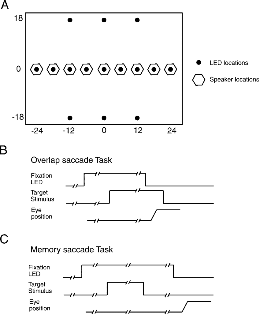 medium resolution of stimulus array and behavioral tasks a schematic of the speaker light emitting diode