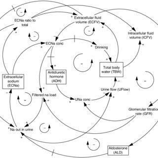 4. Normal physiologic relationships among EC osmolality