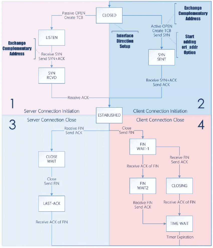 hight resolution of state diagram of detcp left half uses the complementary link to send packets right