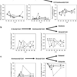 Metabolic flux analysis of C. acetobutylicum under