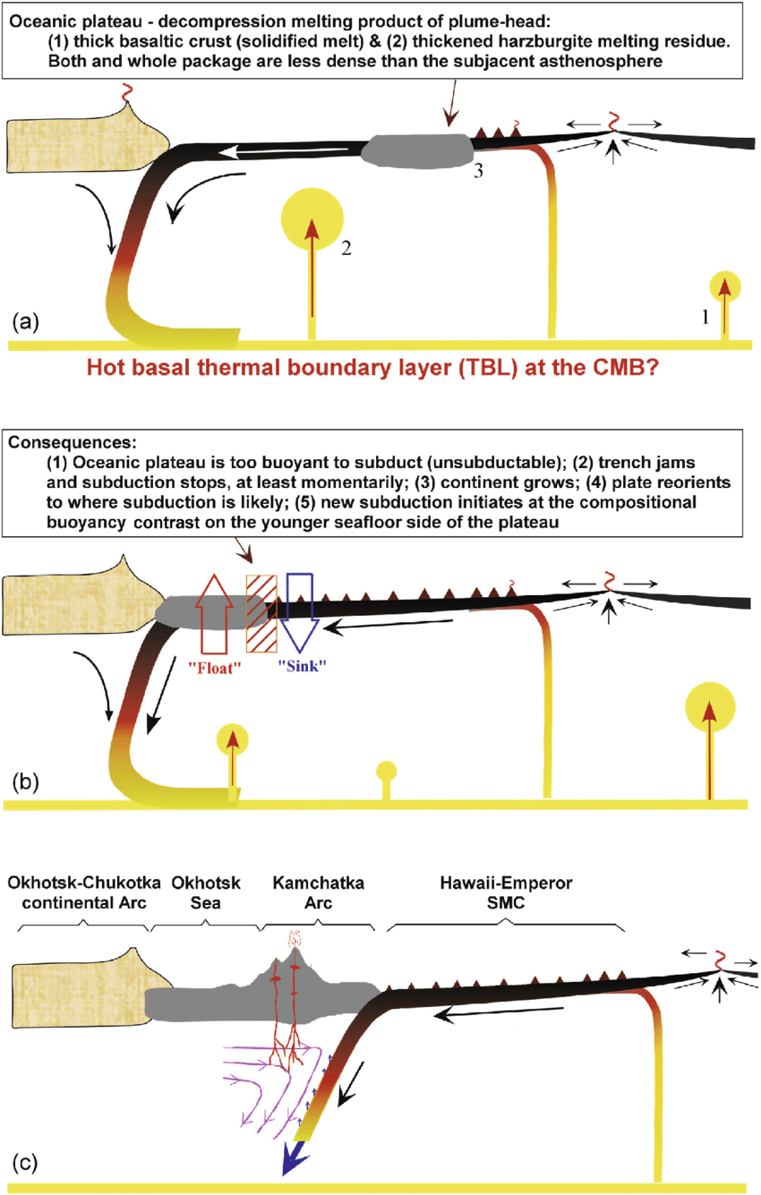 hight resolution of cartoons illustrating the consequences when a buoyant oceanic plateau of mantle plume head origin reaches a