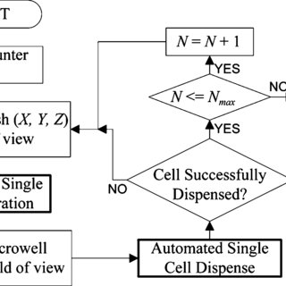 Flow chart presenting automated cell placement sequence of