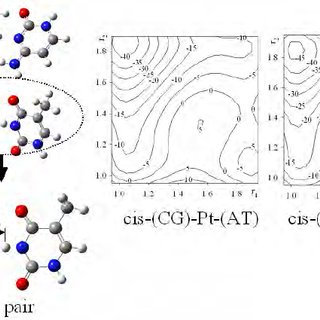 The chemical structures of base pair (GC and AT pair