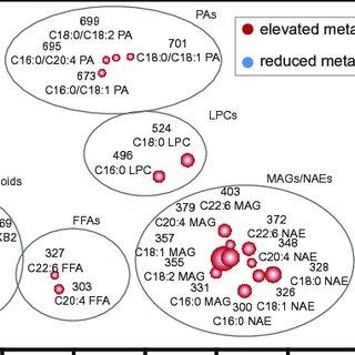 (PDF) A Dysregulated Endocannabinoid-Eicosanoid Network