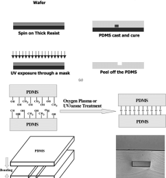 a soft lithography process of fabricating microfluidic channels b download scientific diagram [ 850 x 1041 Pixel ]
