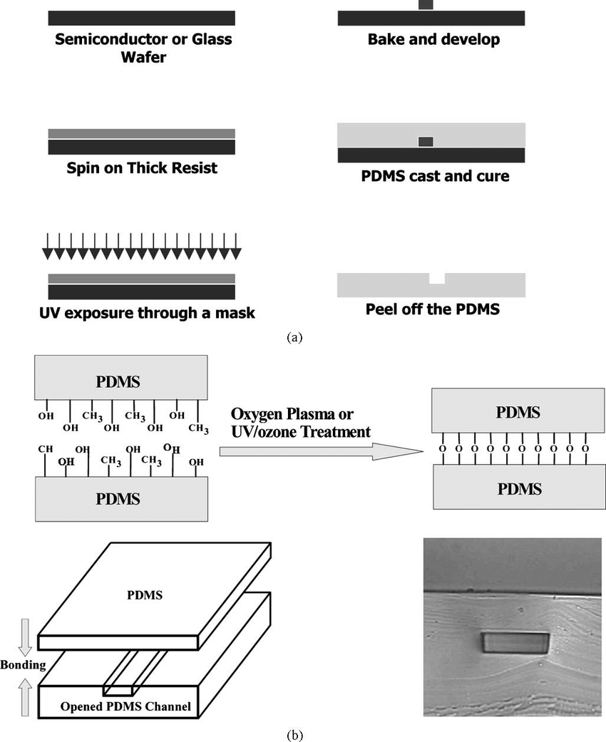 medium resolution of  a soft lithography process of fabricating microfluidic channels b download scientific diagram
